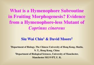 Siu Wai Chiu 1  & David Moore 2