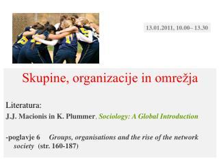 Skupine, organizacije in omrežja Literatura:
