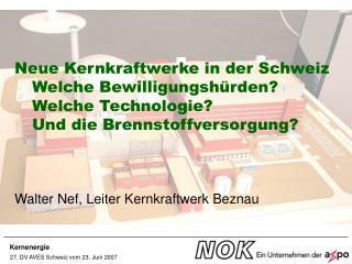 Neue Kernkraftwerke in der Schweiz Welche Bewilligungshürden? Welche Technologie?