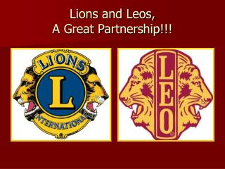 Lions and Leos, A Great Partnership!!!