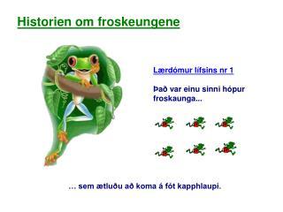 Lærdómur lífsins nr 1 Það var einu sinni hópur froskaunga...