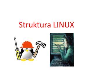 Struktura LINUX