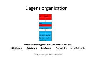 Dagens organisation