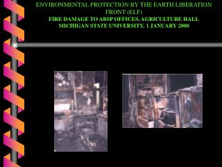 ENVIRONMENTAL PROTECTION BY THE EARTH LIBERATION FRONT ELF FIRE DAMAGE TO ABSP OFFICES, AGRICULTURE HALL MICHIGAN STATE