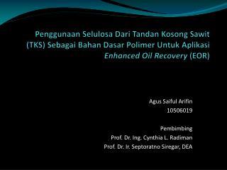 Agus Saiful Arifin 10506019 Pembimbing Prof. Dr. Ing. Cynthia L. Radiman