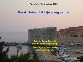 Rovinj, 14-15. prosinac 2009.