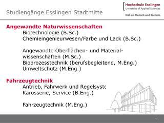 Studieng�nge Esslingen Stadtmitte