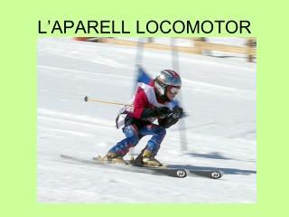 L'APARELL LOCOMOTOR