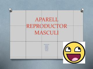APARELL REPRODUCTOR MASCULI
