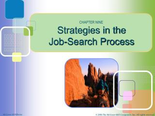 Strategies in the  Job-Search Process