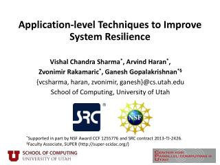Application-level Techniques to Improve System Resilience