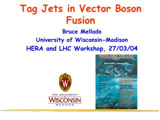 Tag Jets in Vector Boson Fusion