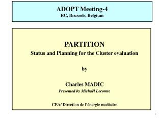 PARTITION Status and Planning for the Cluster evaluation by Charles MADIC