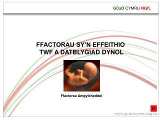 FFACTORAU SY'N EFFEITHIO  TWF A DATBLYGIAD DYNOL