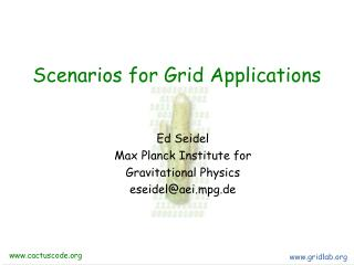 Scenarios for Grid Applications