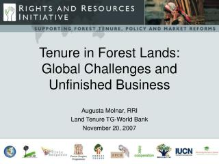 Tenure in Forest Lands: Global Challenges and Unfinished Business