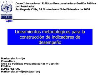 Lineamientos metodológicos para la construcción de i ndicadores de  d esempeño