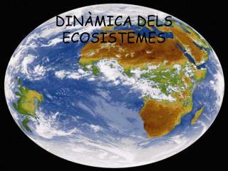 DINÀMICA DELS ECOSISTEMES