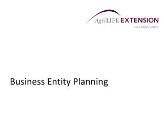 Business Entity Planning