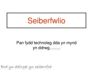 Seiberfwlio