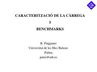 CARACTERITZACI� DE LA C�RREGA I BENCHMARKS