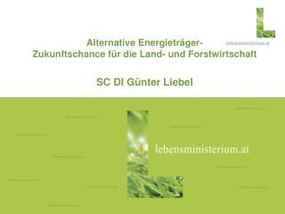 Alternative Energieträger- Zukunftschance für die Land- und Forstwirtschaft SC DI Günter Liebel