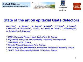 State of the art on epitaxial GaAs detectors