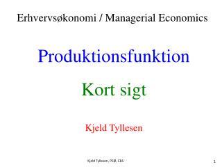 Produktionsfunktion Kort sigt Kjeld Tyllesen