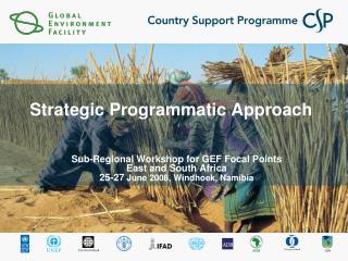 Strategic Programmatic Approach