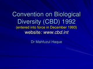 Dr  Mahfuzul Haque