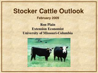 Ron Plain Extension Economist University of Missouri-Columbia