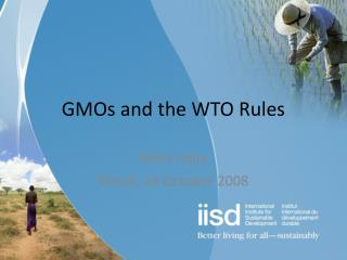 GMOs and the WTO Rules