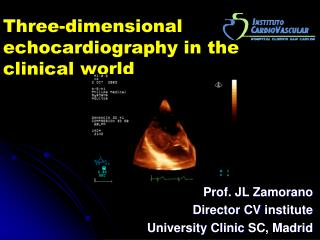 Three-dimensional echocardiography in the clinical world