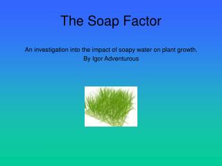The Soap Factor