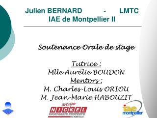 Julien BERNARD  - LMTC IAE de Montpellier II