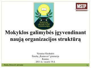Mokyklos galimybės įgyvendinant naują organizacijos struktūrą Vytautas Giedraitis