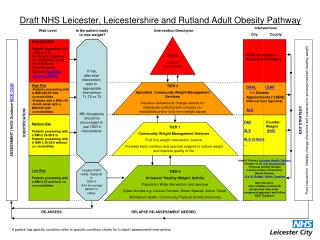 Draft NHS Leicester, Leicestershire and Rutland Adult Obesity Pathway