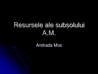 Resursele ale subsolului A.M.