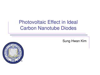 Photovoltaic Effect in Ideal Carbon Nanotube Diodes