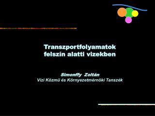 Transzportfolyamatok  felszín alatti vizekben Simonffy  Zoltán