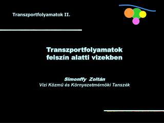 Transzportfolyamatok  felsz�n alatti vizekben Simonffy  Zolt�n
