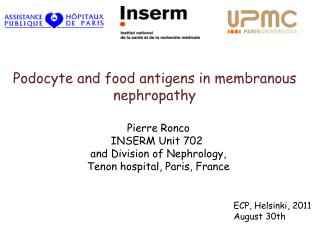 Podocyte and food antigens in membranous nephropathy