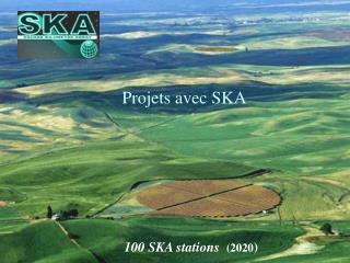 100 SKA stations  (2020 )