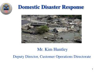 Domestic Disaster Response