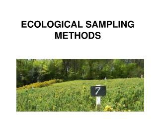 ECOLOGICAL SAMPLING METHODS