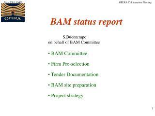 BAM status report