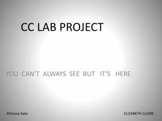 CC LAB PROJECT
