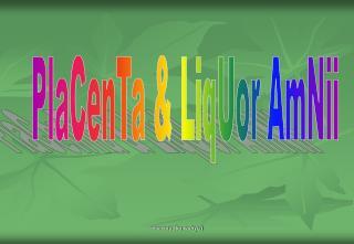PlaCenTa & LiqUor AmNii