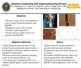 Quantum Computing with Superconducting Devices