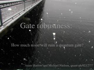 Gate robustness: